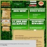 Bingo Bongo Casino Bonus Codes