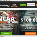 Tiger Gaming Online Betting