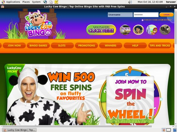 Lucky Cow Bingo Live Casino Uk